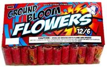 GROUND BLOOM FLOWERS 72's K6909